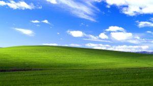 Windows XP 草原 壁紙
