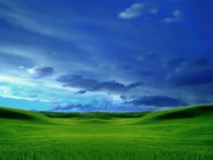 Windows XP Media Center 壁紙